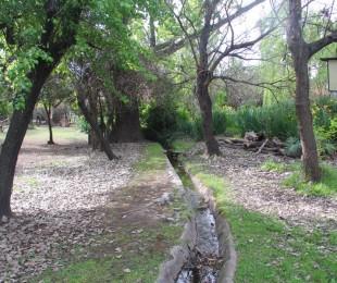 laguna-merlo-parque-8